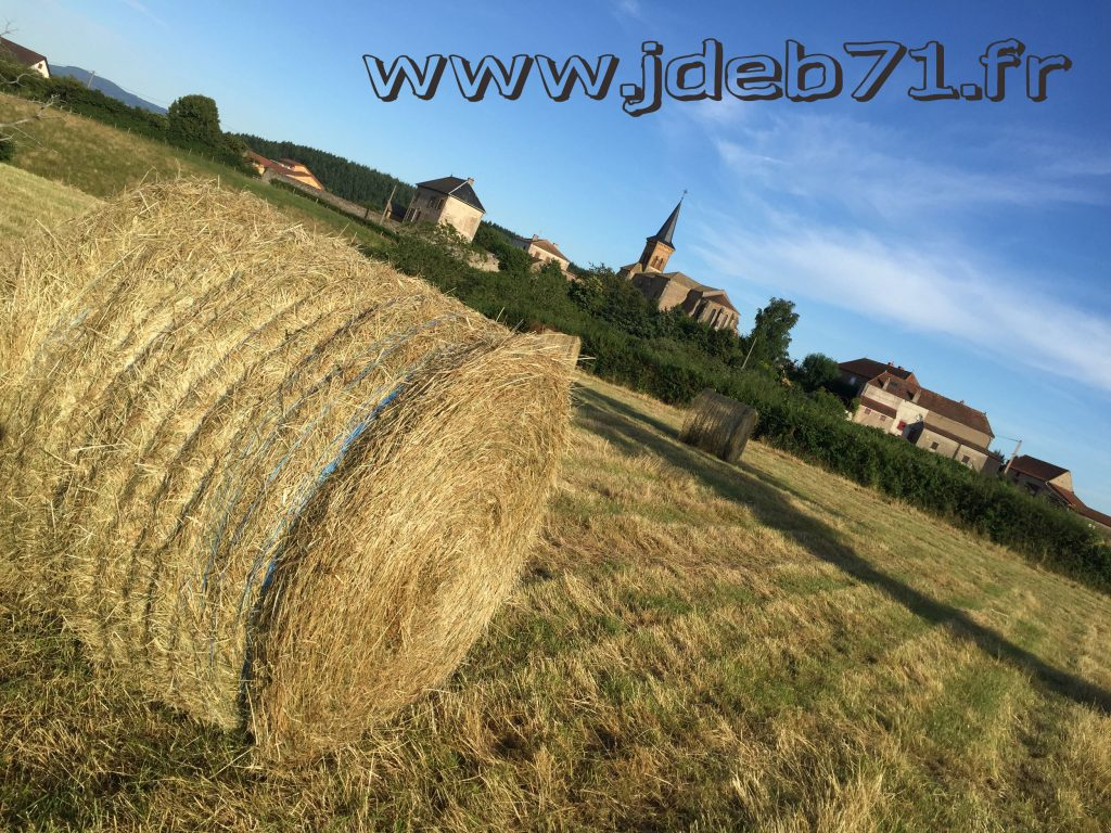 2016_campagne_4185